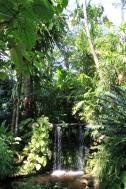 Cachoeira...Fairchild Tropical Garden....