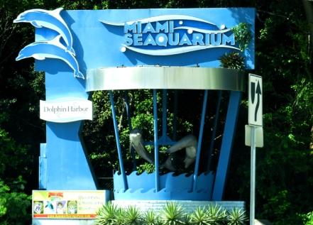 Seaquarium - Um sonho de criança se tornando realidade!